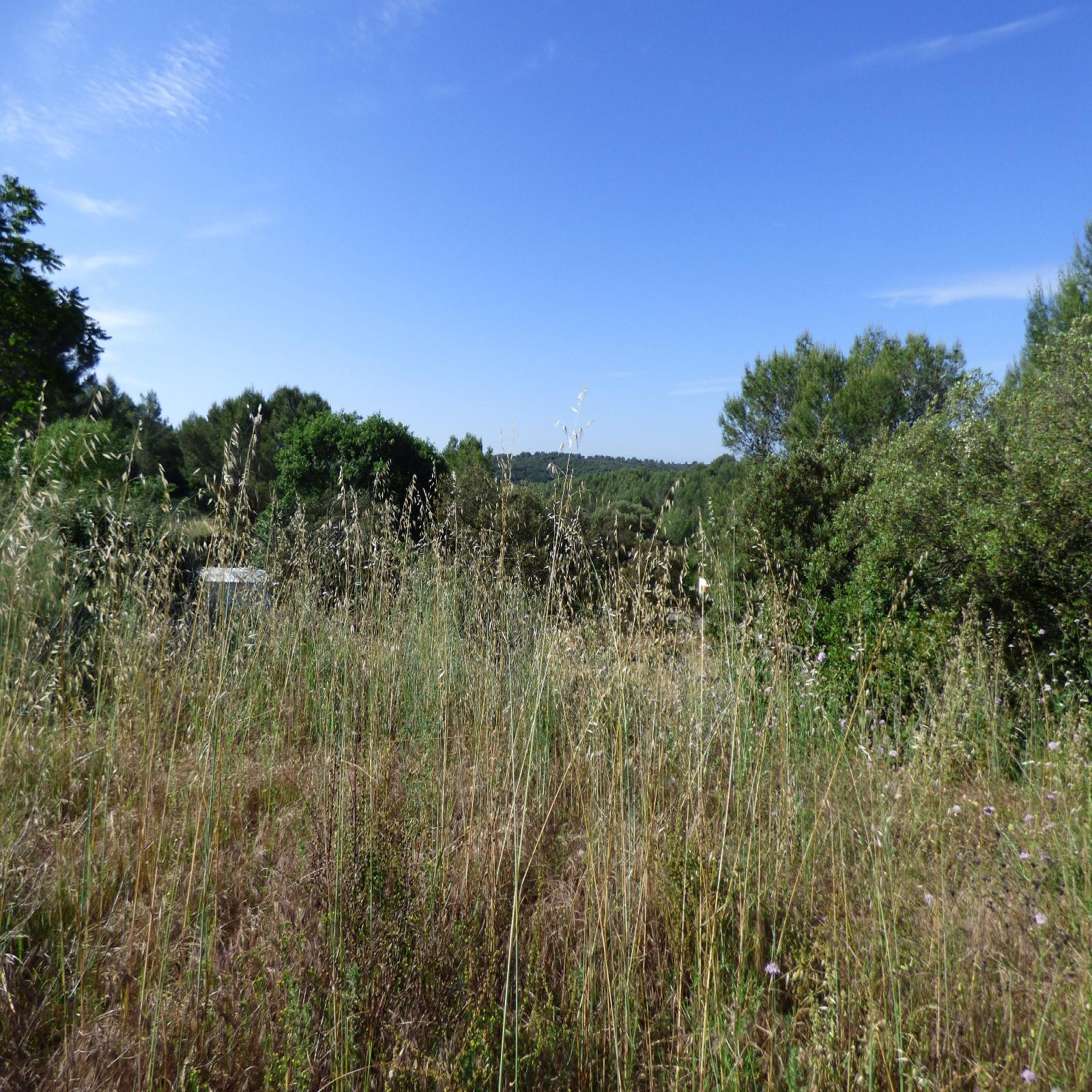 Image_, Terrain, Nîmes, ref :1425
